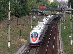 Для разных групп пассажиров для проезда в поезде «Сапсан» предусмотрены особые тарифы, которые существенно снижают стоимость билетов:
